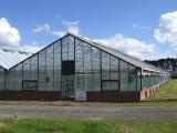 glasshouse_crops_1