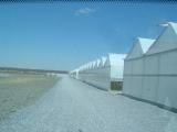 greenhouse_10