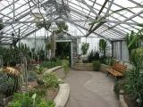 allan_gardens_cactus_room