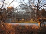 farquharson_life_sciences_greenhouse