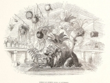 epiphyte_house_at_knypersley-mex-_1837