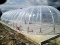 ETFE Microdome