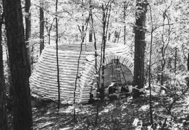Marlene Wulf's earthbag dome under construction, deep in the woods of Georgia.