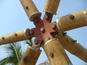 Geodesic bamboo hub