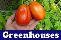 Learn about building and operating greenhouses